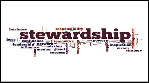 Schedule a Stewardship Sunday!